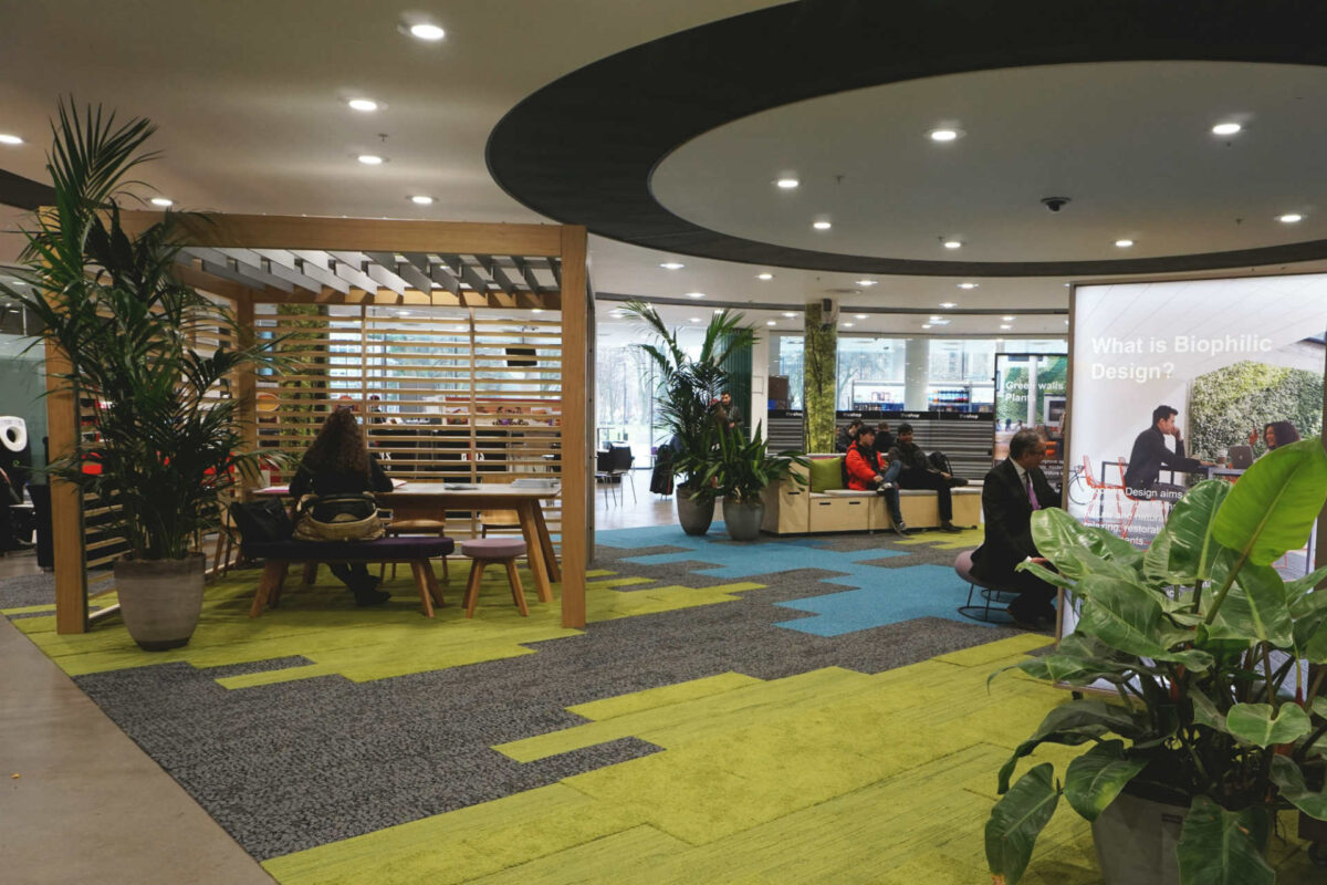 The Biophilic Office at BRE – Gathering the Evidence for the Value of Nature-Inspired Design