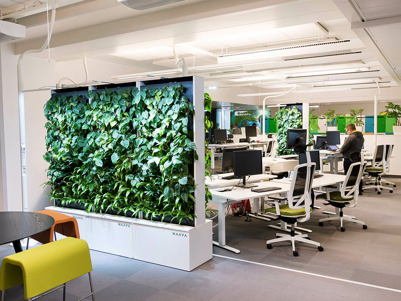 Clean air: Could this living wall transform your working day?