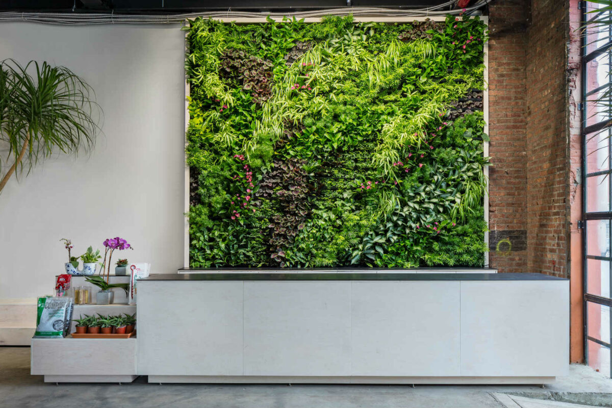 Greenery Unlimited: New York welcomes world's first Biophilic Design Store