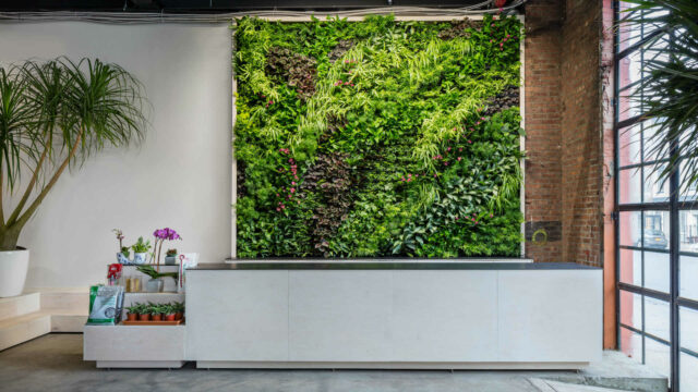 https://workinmind.org/wp-content/uploads/2019/03/greenery-unlimited-new-york-welcomes-worlds-first-biophilic-design-store-3-640x360.jpg