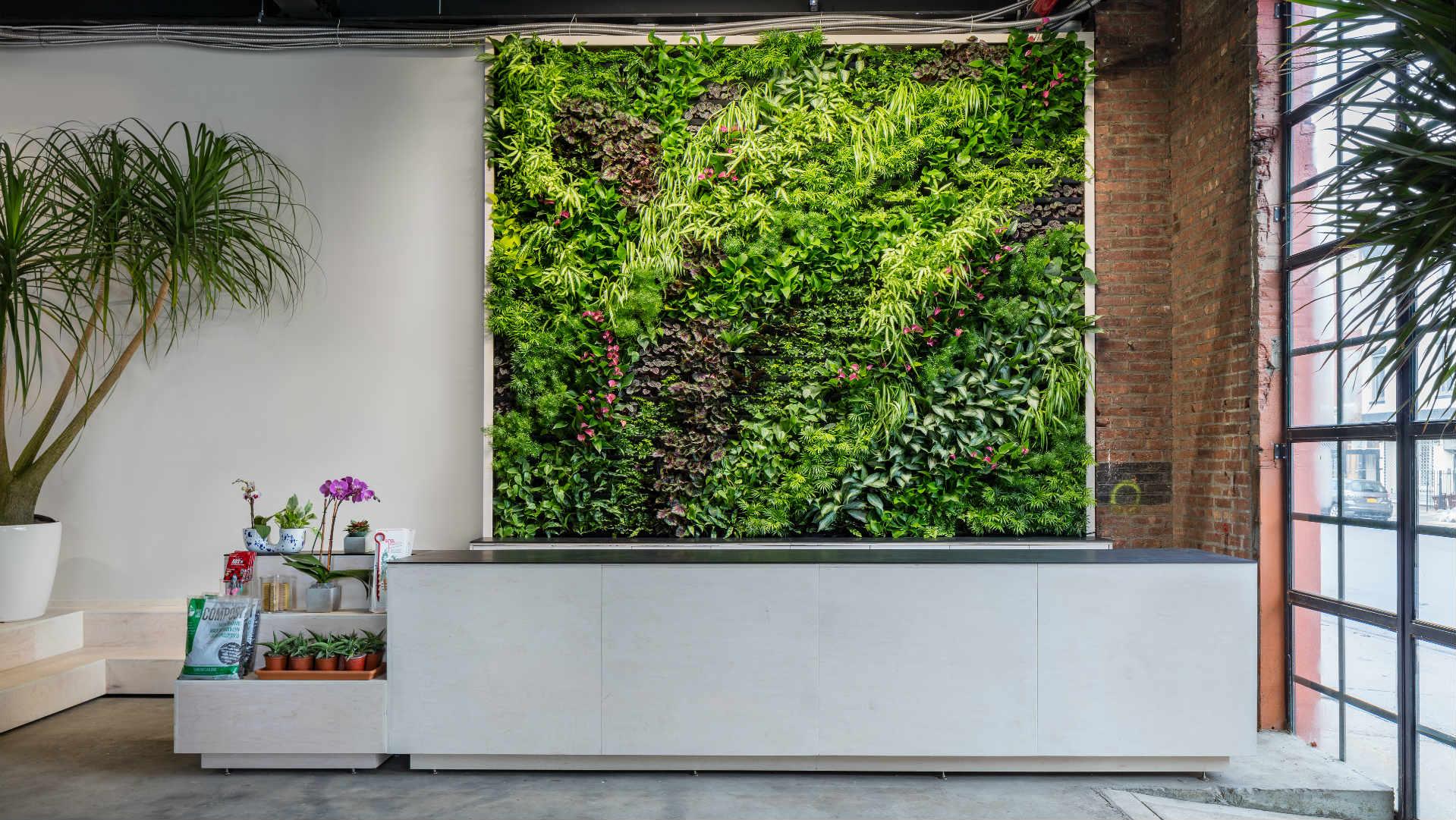Greenery Unlimited: World's first Biophilic Design Store ... on ecological design, media design, office design, boom gate design, water design, organic architecture design, principles of design, evidence-based design, landscape design, barrier design,
