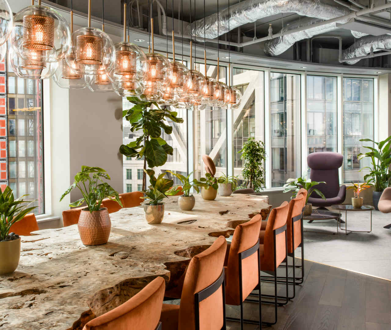Healthy workplaces: Inside Uncommon's biophilic development
