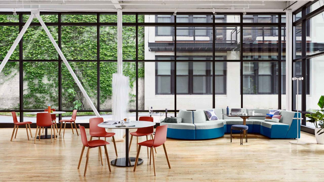 Hanging foliage, relaxation hubs and dynamic spaces are set to be big in the year ahead according to office trends report by Ambius.