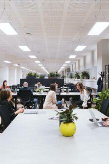 Is office design important for staff recruitment & retention? BRITA VIVREAU's new H2O - Home to Office Report explores...