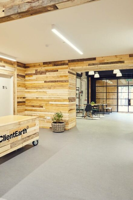 How to create a sustainably social workplace – Peldon Rose explains how